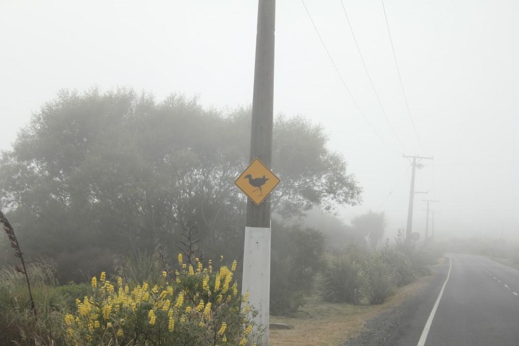 Heureusement les panneaux jaunes sont bien visibles, même à travers la pluie et le brouillard !
