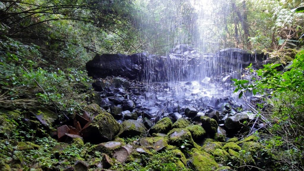 Cascade au coeur de la jungle du Mondolkiri