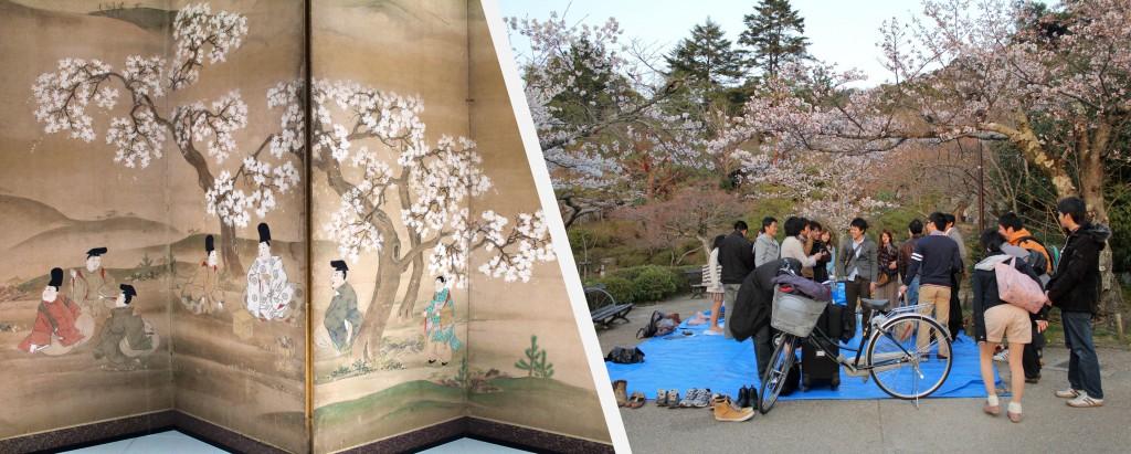 Comme leurs ancêtres les japonais fêtent le Hanami en pique-niquant sous les cerisiers en fleurs