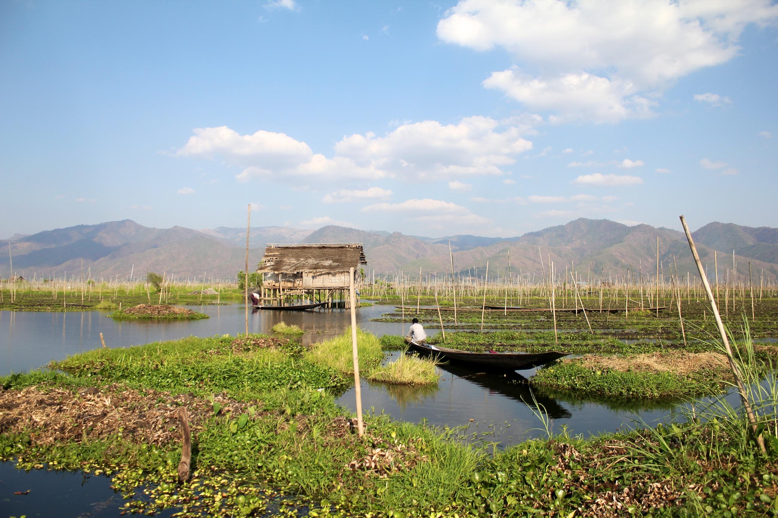Jardin flottant du lac inl for Planificateur jardin
