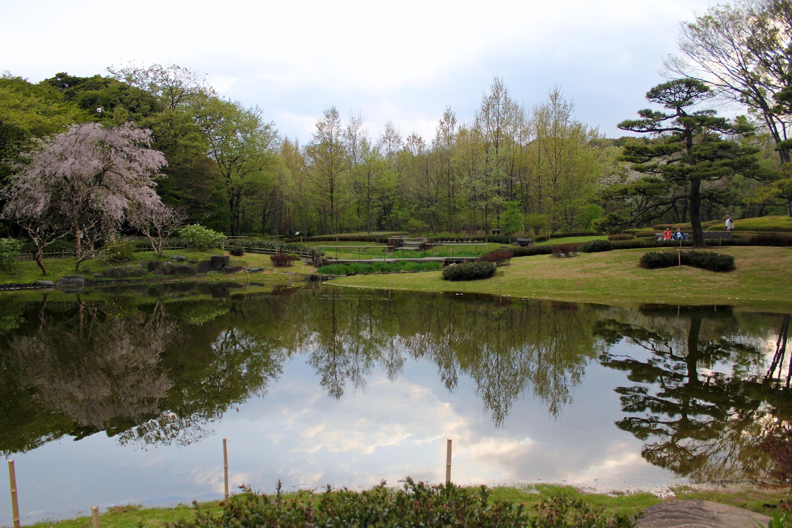 Dans le jardin oriental du palais imp rial for Jardin oriental
