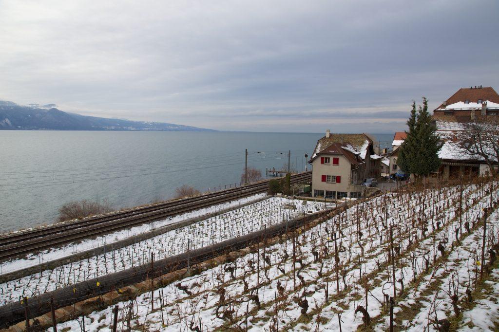 Notre première rencontre furtive avec les terrasses de Lavaux, un hiver sous la neige